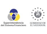 Capital social de sociedades proveedoras de dinero electrónico